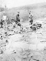 Unidentified Camp Harrison men at work on a local farm, breaking up rock to make